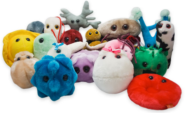 Giant stuffed-animal microbes
