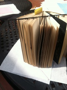 Book fanned upright for drying