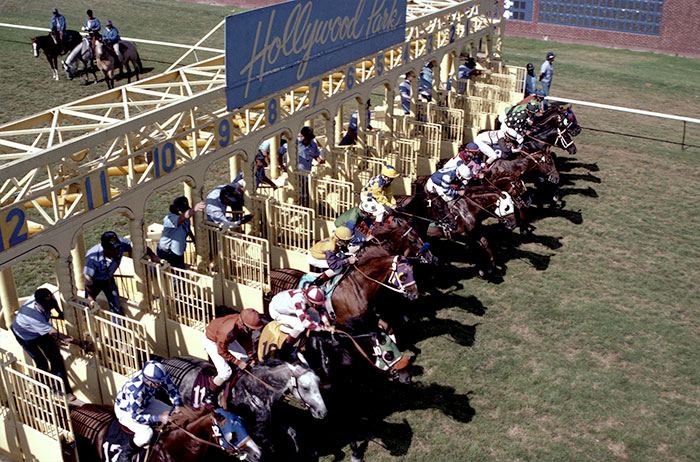 Image of horses at the starting gate