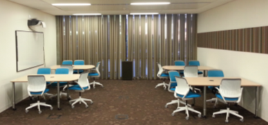 picture of Scholarly Innovation Lab