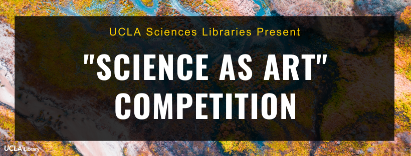 science as art competition banner