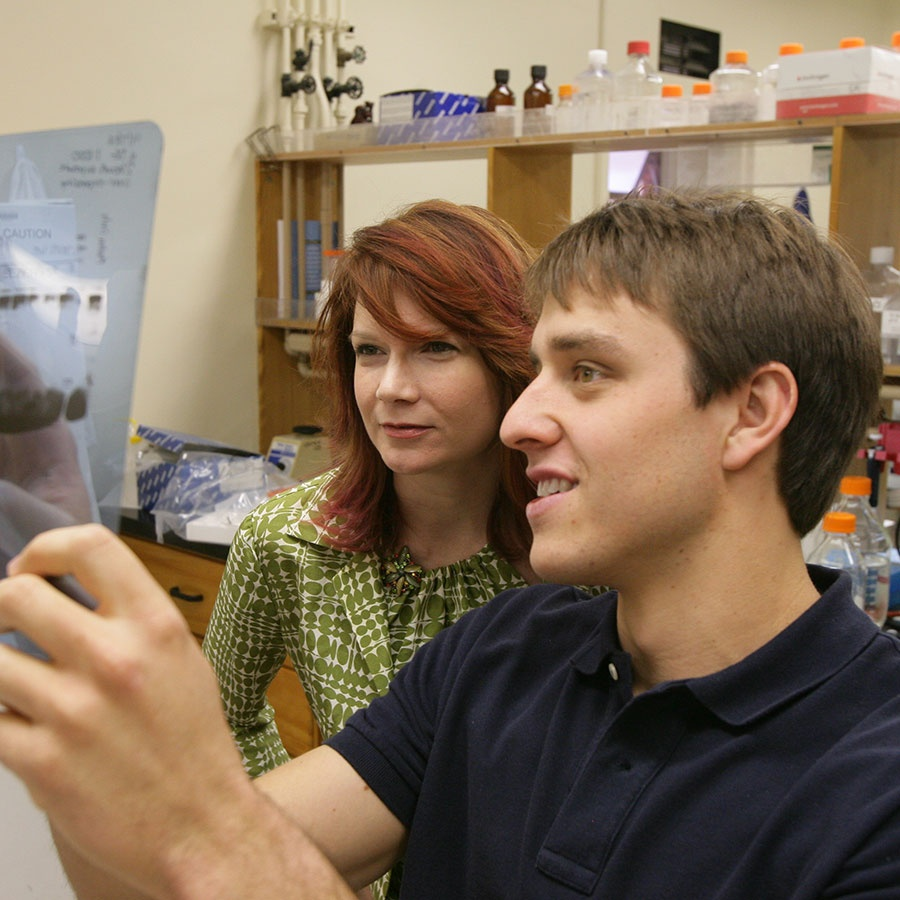 Two researchers examining transparencies in a laboratory