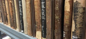 Row of leather bound books awaiting treatment