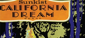 Image of orange crate label Sunkist California Dream