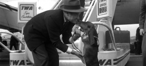 Bob Hope on his return from eight-day Christmas tour of military bases greeted by his dog Recession in Los Angeles, Calif., 1959